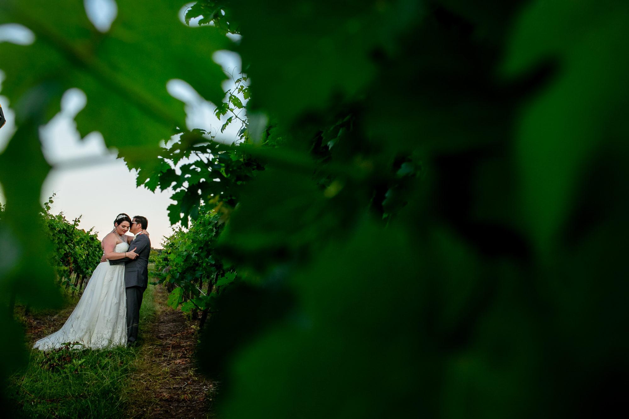 Austin Vineyard Wedding